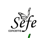 Sefe Concerns