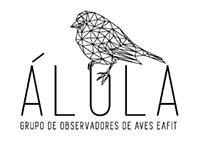 ÁLULA