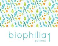 Biophilia Patterns