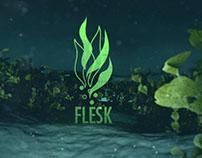 Flesk Visual Branding