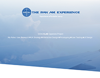 Pan Am Case Study—work in progress