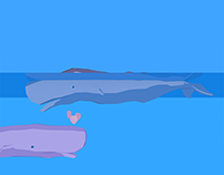 M.E.E.R. e.V. Whale Protection