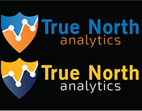 "Logo ""True North Analytics"" (BETA 2)"