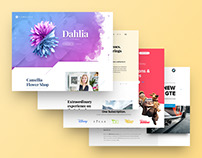 2017 Web Design