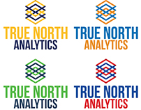 "Logo ""True North Analytics"" (BETA 4)"