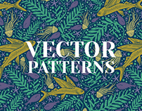 Vector patterns 2017