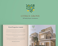 Citrus Grove_CATALOGUE