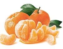 Noble Mandarin: Stock Photography