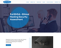 Website Design 43