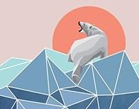Polar Bear live in North Pole