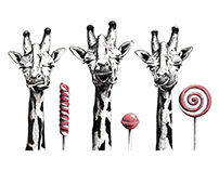 Gum & Fun Animals - Series Giraffes