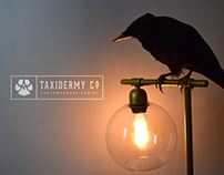 Taxidermy Co. UK Branding
