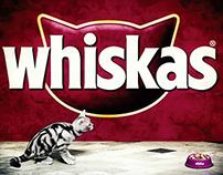 Whiskas interactive totem