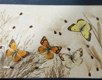 butterflying ii