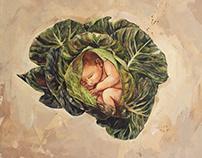 Placenta Vegetal