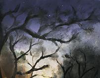 Silver Night and a Hazy Dream