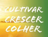 Cultivar, Crescer e Colher