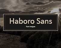 Haboro Sans. Simple goes a long way.