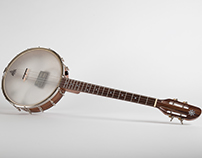 Custom 19 Fret Tenor Banjo