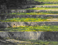 Abstract stone stairs scenery in nature