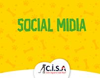 Social Midia - CISA