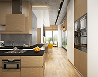 Contemporary Minimal Kitchen