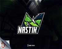 Team Nastik