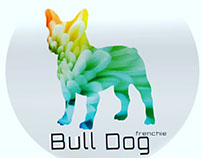 bull dog - frenchie