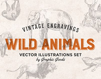 Wild Animals - Vintage Engraving Illustration Set