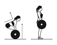 Workout Instructions