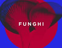 Funghi — Food truck concept