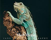 Smile Blue Iguana