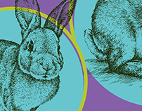 Easter Bunny Ball. Poster illustration and social media
