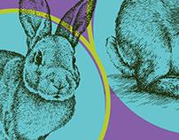 Easter Bunny Ball. Poster illustration and social media