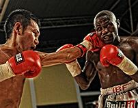 IBF - World Title Fight