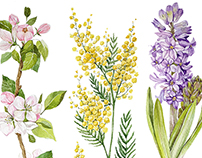 Spring Botanicals