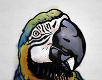 FLIGHT: Bird Illustration Collection