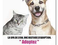 SPA de LYON // Campagne d'adoption 2010/2011