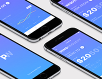 PayWise | iOS Wallet App Concept