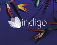 INDIGO nail and brow bar