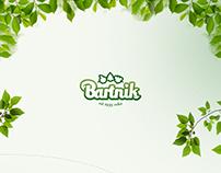 Bartnik