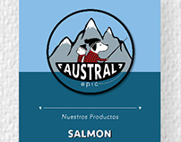 Sistema grafico Austral Epic web y papelería
