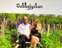Logo and website for Gubbalyckan artists