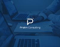 Prelim Consulting Logo Design