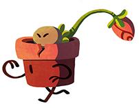 Terracotta & Bud