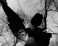 Fotografia: Cemitério da Consolação
