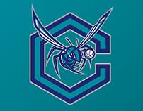Charlotte Hornets logo concept