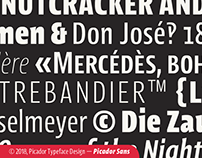 Picador Sans. Intriguingly condensed typeface.
