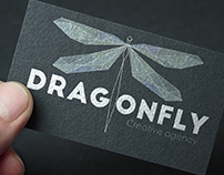 PROJET SCOLAIRE:Dragonfly