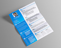 Free Resume Template with 2-Column Layout